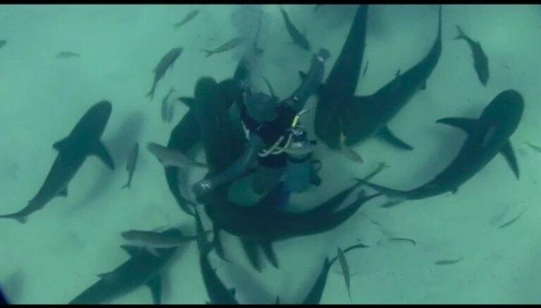 Šokējošs video: Kā ūdenslīdēja - ekstrēmiste dejo plēsīgu haizivju ielenkumā