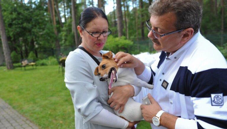 Miljonāri Teterevi sarīko smalku suņu balli