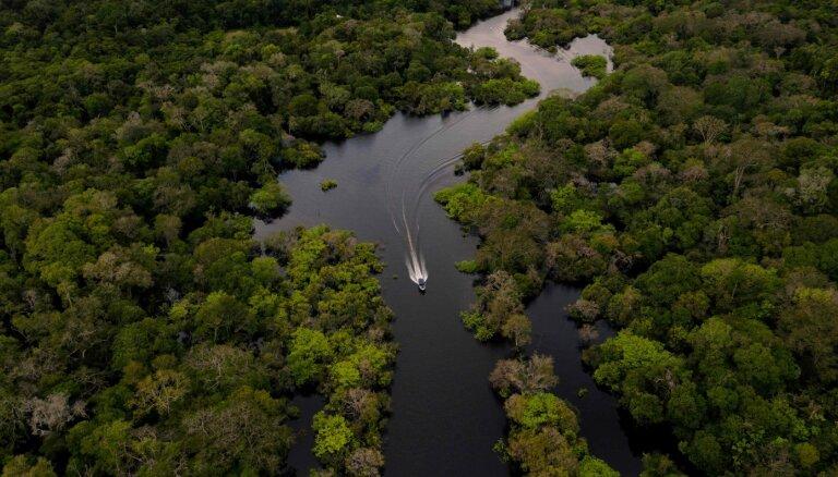 Выжить в джунглях: история чудесного спасения бразильского пилота