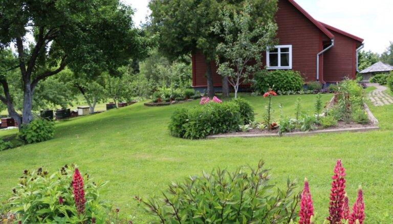 Sacensības radošumā: netradicionālas dārza rotas Alūksnes novada lauku sētās