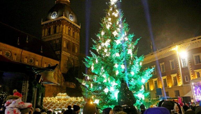 В Риге зажгут праздничную елку и откроют рождественские рынки