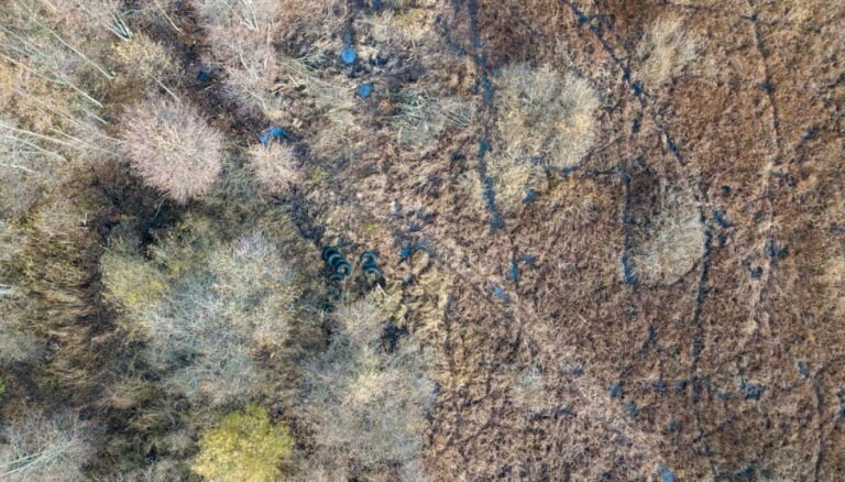 Foto: Peldlīdzekļu mulāžas no riepām – Papes dabas parks pēc sakopšanas talkām