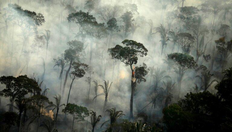 Jūnijā Amazonē fiksēto ugunsgrēku skaits aug par 20%