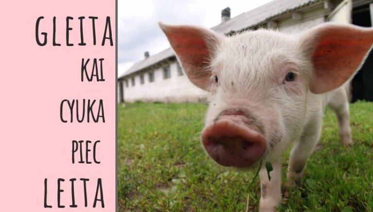 Izdota latgaliešu humora grāmata 'Kas bez iuzu – tys bez bādys!'