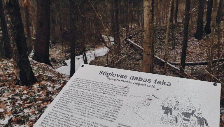 ФОТО. Природная тропа вдоль Стигловского оврага, длиной 2,4 километра