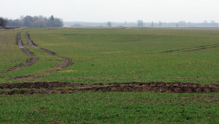 Pieprasījums pēc Latvijā izaudzētajiem produktiem pieaug
