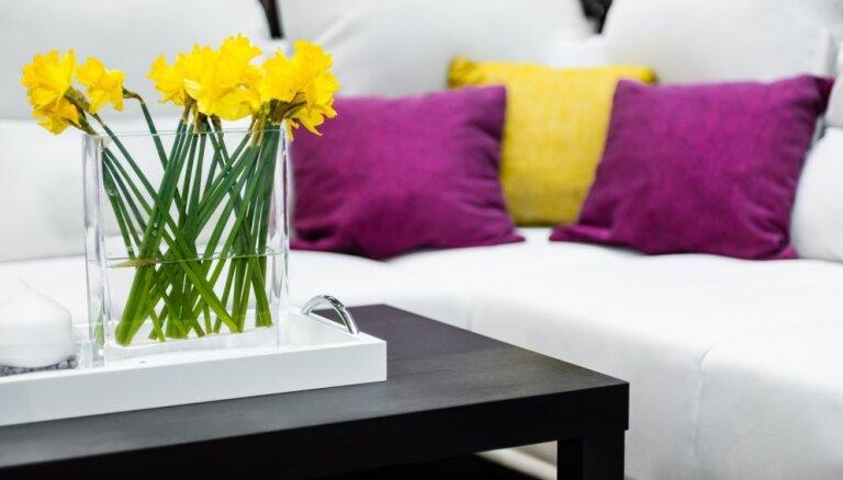 Pavasara gaidās – idejas, kā ar minimāliem līdzekļiem ienest mājās krāsainību