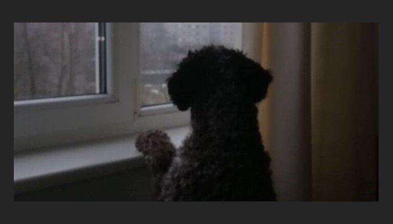 Rīgā no ceturtā stāva loga izkritis vīrietis