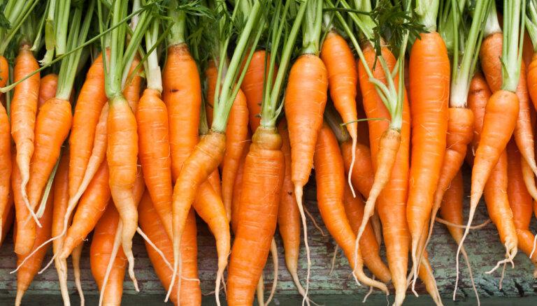 Sakņu dārzenis burkāns: kādas uzturvielas satur un ko pagatavot