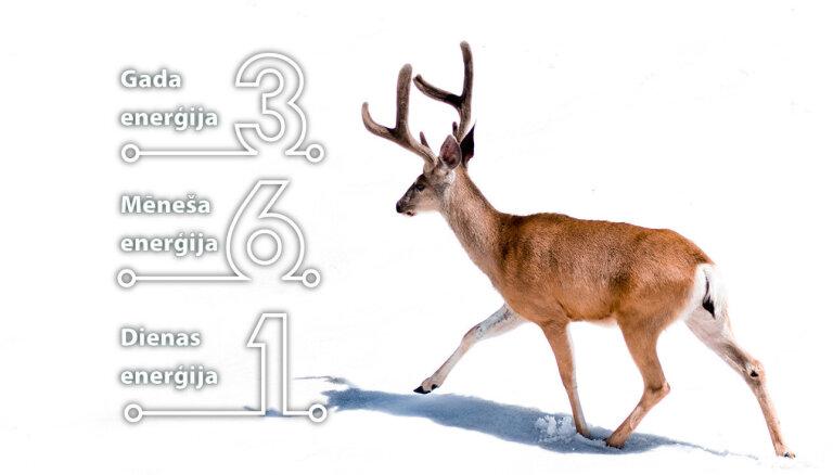 31. decembra numeroloģiskais dienas fons