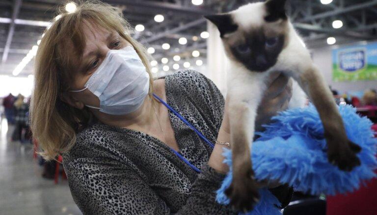 Kaķi, suņi un Covid-19: vai mīļdzīvnieki ir riska faktors un ko par to saka zinātne