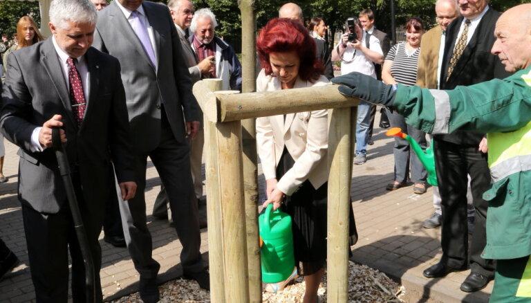 """ФОТО: в Риге, Таллине и Вильнюсе посадили деревья в память о """"Балтийском пути"""""""