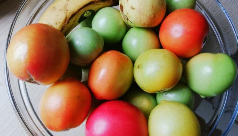'Tavs Dārzs' testē, kā divās nedēļās nogatavināt zaļus tomātus