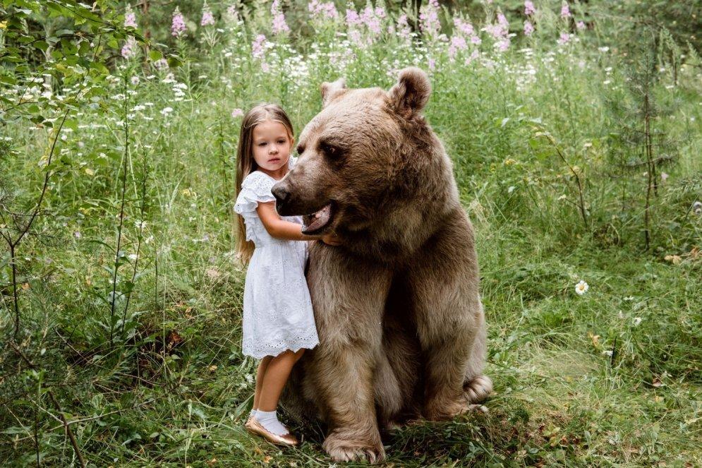 подборка ручной медведь картинки дело наши