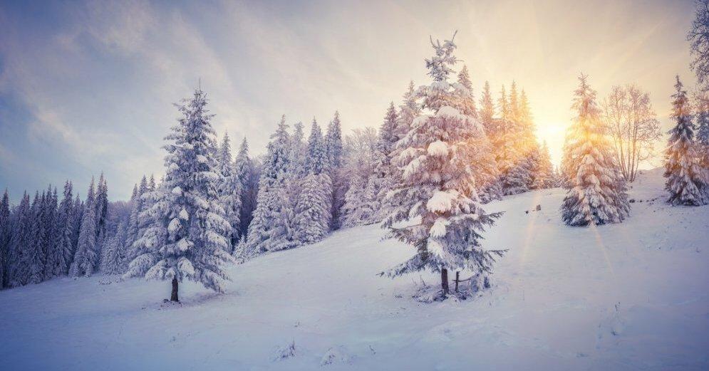 Температура воздуха в Латвии в этом десятилетии на 1,4 градуса превысила историческую норму