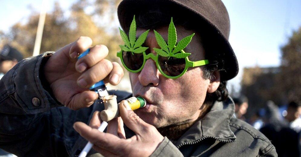 В польше марихуаны курение марихуану биохимия анализ на крови покажет