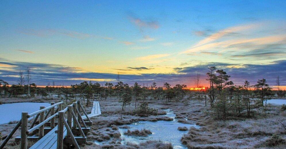 """Attēlu rezultāti vaicājumam """"ķemeru nacionālais parks ziema"""""""
