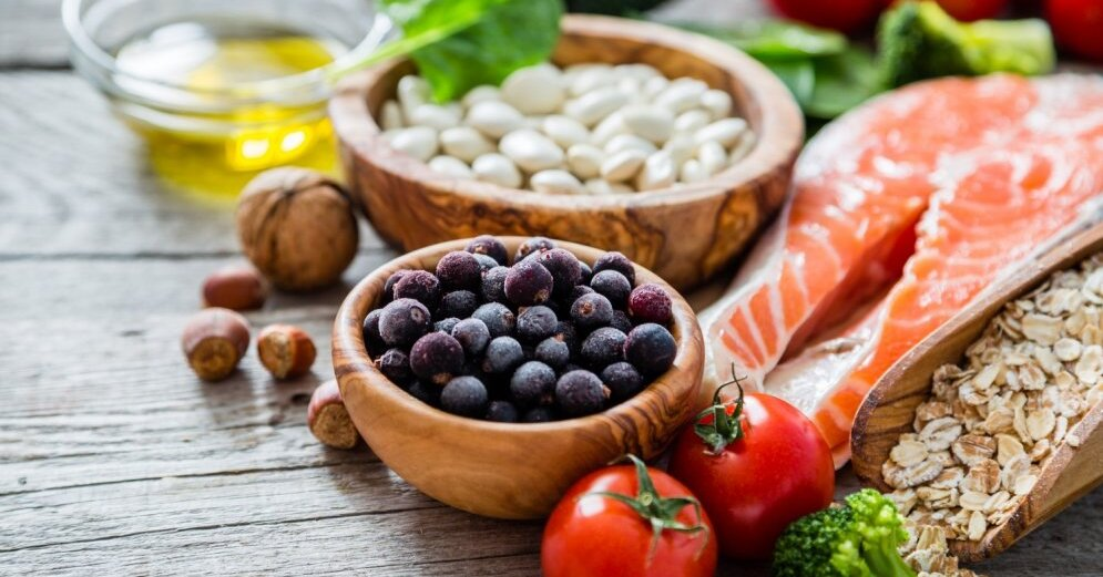 the vegetarian diet nutrition Vegan diets are based on grains, seeds, nuts, legumes, soy, fruits, vegetables, and oils a lacto-vegetarian eats dairy products in addition to the vegan diet an ovo-vegetarian eats eggs along.