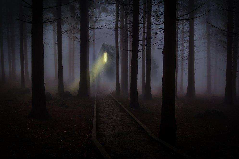 Vilkači, maldugunis un citi mošķi, kas mīt Latvijas mežos