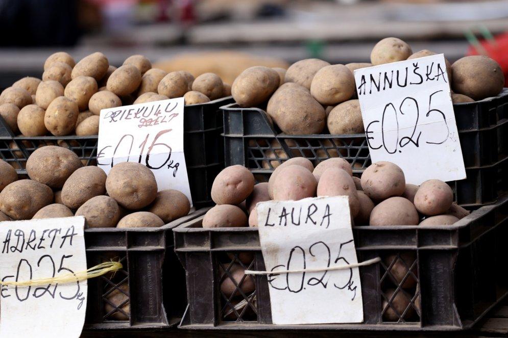 Pimpulis, pampālis, uļbins, pentupelis – vārdi, kādos latvieši sauc kartupeļus