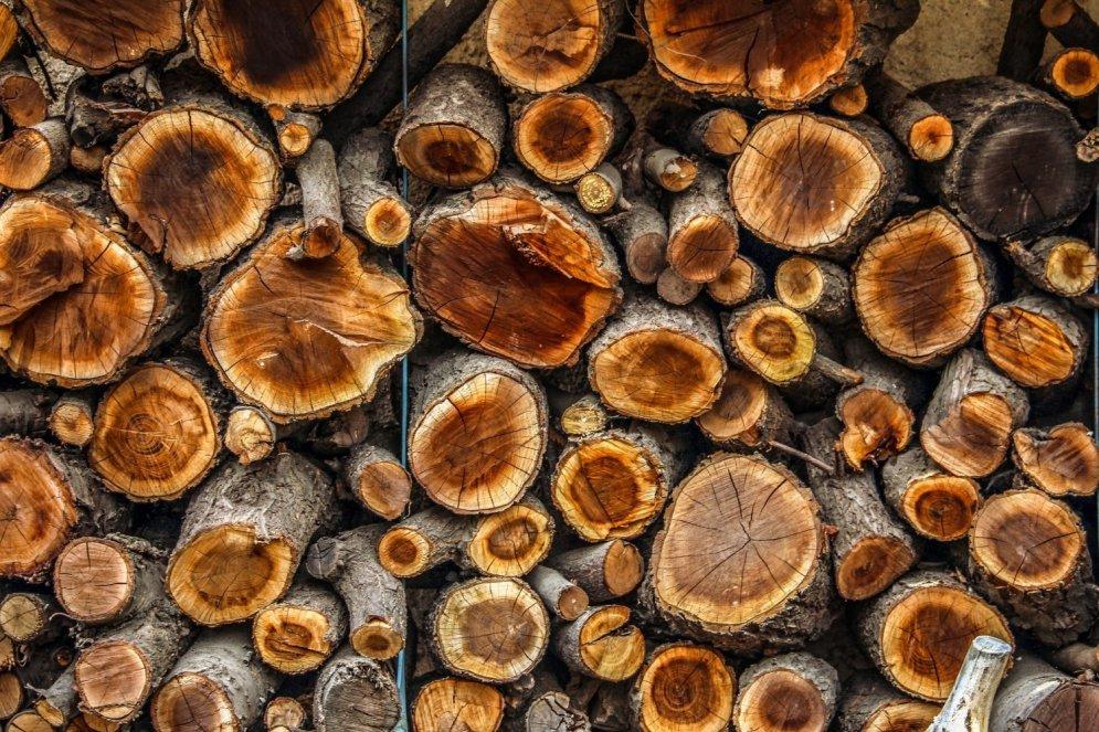 Jaunākās tendences koka izmantošanai interjerā
